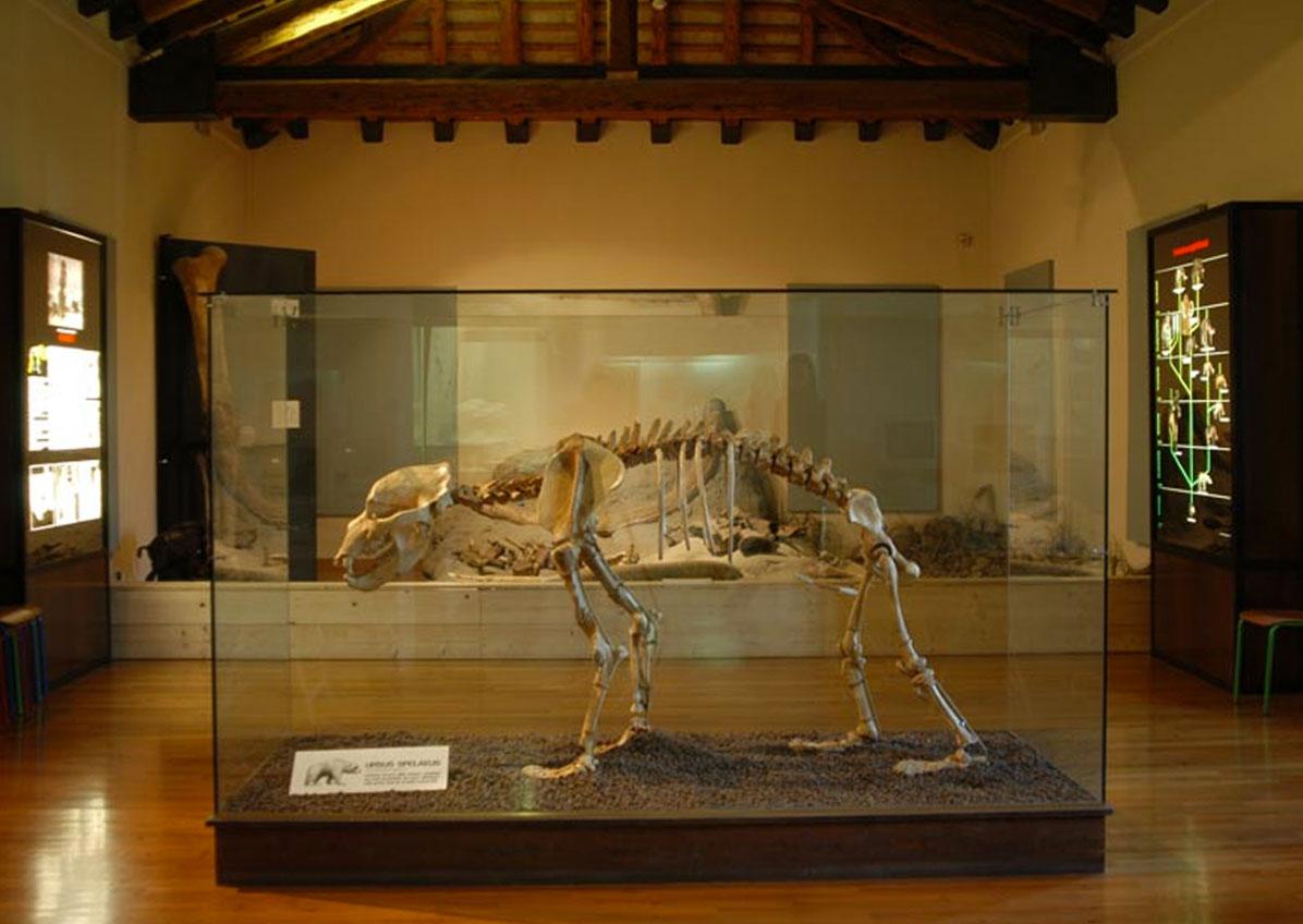 museo la terra e l'uomo - crocetta del montello